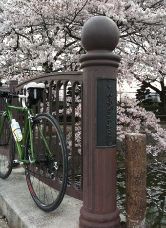 saitama_sakura02.jpg